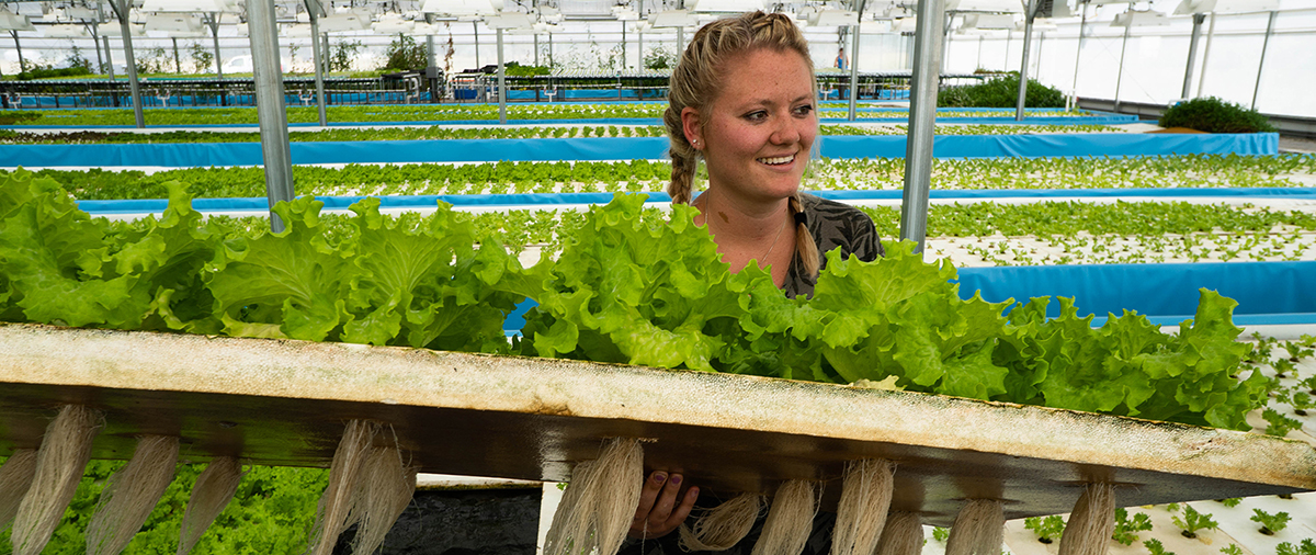 Woman holding up hydroponic vegetables